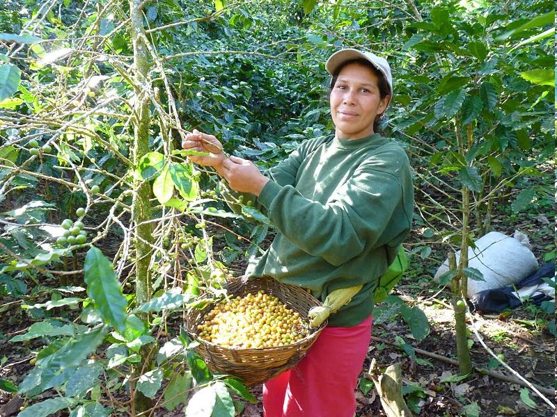 Le Nicaragua en images