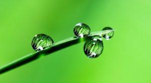 L'eau et sa symbolique biblique