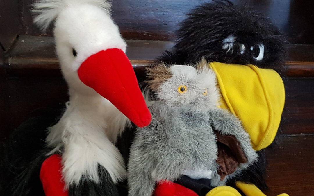 Culte pour les petits avec des oiseaux