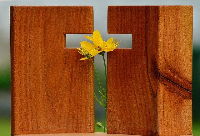 Jardin de Pâques – jour 9