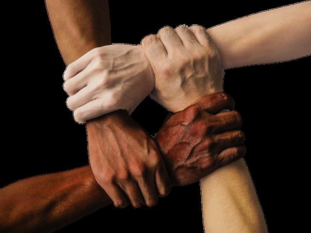 Culte à 4 pattes : la force de l'amitié