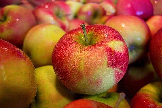 La création de Dieu 1 : L'arbre et les pommes